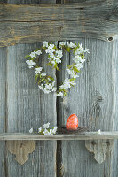 Wreath of cherry blossom and hand-painted red Easter egg on shelf on rustic wooden wall