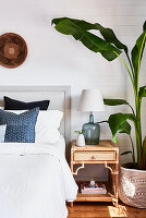 Banana plant next to bed in bedroom with topical ambience