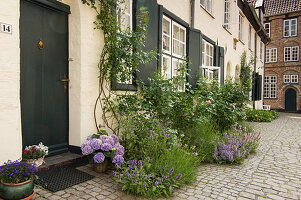 Residential street in historical old town decorated with planted containers, beds and climbing plants