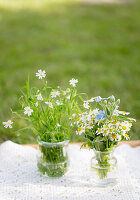 Wild flowers in glass vessels
