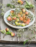 Teller auf Gartentisch mit kleinen Äpfeln und Clematis