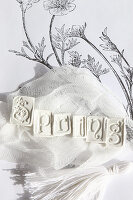 Letters spelling 'Spring' embossed in modelling clay blocks on piece of gauze