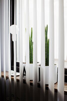 Zimmerpflanze im Übertopf, mit schwarzem Buchstabe beklebt, hinter Lamellenvorhang