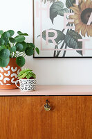Houseplants on retro bureau restored and given pink top