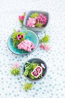 Bartnelken Blüten