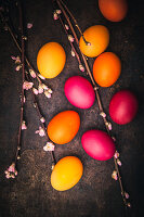 Sprigs of blossoms and Easter eggs coloured with organic dyes