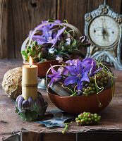 Schale mit Clematis, Weintrauben und Brombeeren dekoriert