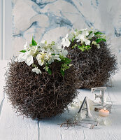 Table decorations with panicle hydrangea flowers