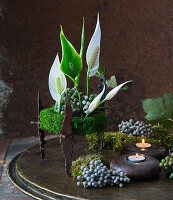 Peace lilies and Brunia seed heads