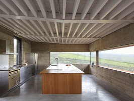 Minimalist kitchen in modern, concrete, architect-designed house