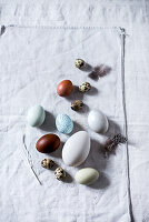 Various types of egg on white fabric