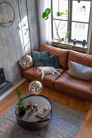 White cat on brown leather sofa in living room in muted shades