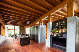 Open-plan kitchen in sustainable, architect-designed house