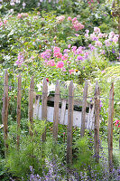 Planter hung from paling fence in flowering garden
