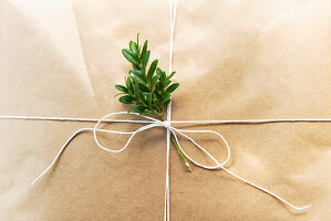 Wrapped Christmas present (detail)
