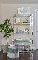 Glass and stainless shelving stlyed with books, flowers, and various items, fig plant, with ottoman trimmed with ombre fringe
