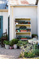 Regal mit Sukkulenten an der Hauswand im Garten