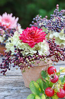Red dahlia with hydrangeas and elderberries in flower pot
