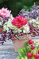 Rote Dahlie mit Hortensie und Holunderbeeren im Blumentopf