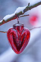 Red glass heart hung from snowy branch