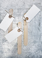 Paper tags on wooden craft sticks