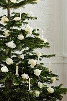 Mit weißen Rosen und weißen Kerzen geschmückter Weihnachtsbaum