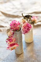 Dried everlasting flowers (Helichrysum) in old tins