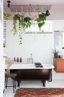 Blumenampeln mit Grünpflanzen an einem Gitter über der Badewanne