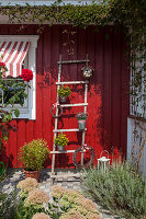 Plants in buckets attached to ladder leading against Falu-red wooden façade