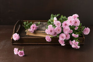 Pink asters on antique wooden tray