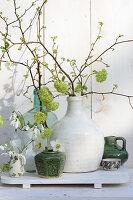 Zarte Frühlingsdeko mit knospenden Zweigen und Schneeglöckchen