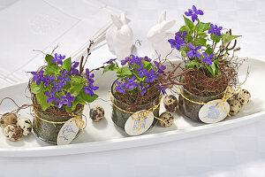 Duftveilchen in Glasgefäßen mit Anhänger und Wachteleier auf Porzellanschale