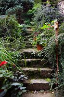 Stone steps in lush garden