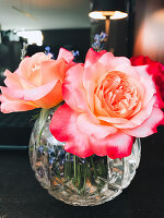 Roses in glass vase