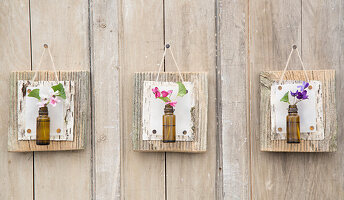 Violets in tiny bottles mounted on wooden boards on wall