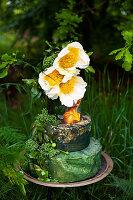 Dekoidee mit Blüten von Pfingstrose 'Claire de Lune'