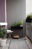 Plant stand and folding chair on balcony with grey wall