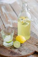 Flasche mit Limonade, Glas, Zitrone und Limette auf einem Holzbrett