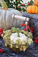White pumpkin in wreath of hydrangea in small basket