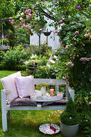 Bench with pillows and a tray under a rose arch in the summer garden