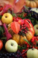 Herbstdeko mit Kürbis, Äpfeln, Vogelbeeren und Lampionblume
