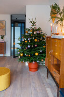 Potted Christmas tree in living room decorated in mid-century modern style