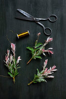 Tying a posy of dappled willow branches with pink variegated leaves