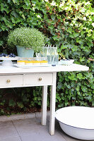 Drinks, desserts and blueberries on summer buffet in garden