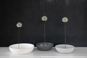 Dandelions in bowls as table decoration