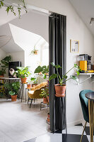 View from the kitchen into the living room with many green plants