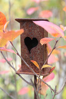 Rusty bird feeder with a heart opening
