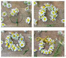 Tying a little wreath of chamomile flowers