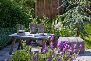 Wooden table and cushions on the terrace