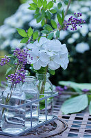 Geranium flower and branch of beautyberry in small bottles